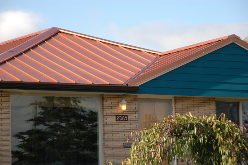 Skyline Copper Penny 2 Metal Roof Specialties